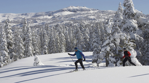 Why is Nordic Skiing great exercise?